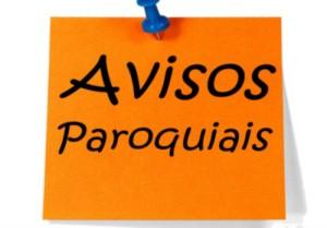 xavisos-700x488.jpg.pagespeed.ic.BXLZgelsul